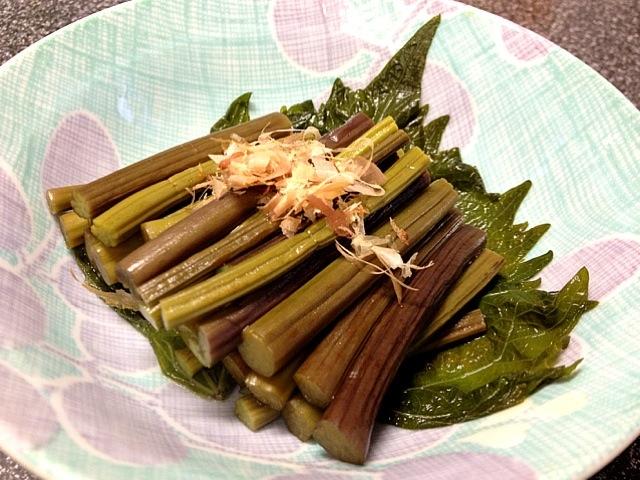 ワラビを使った山菜レシピをリストアップ!歯ごたえにヤミツキ♡