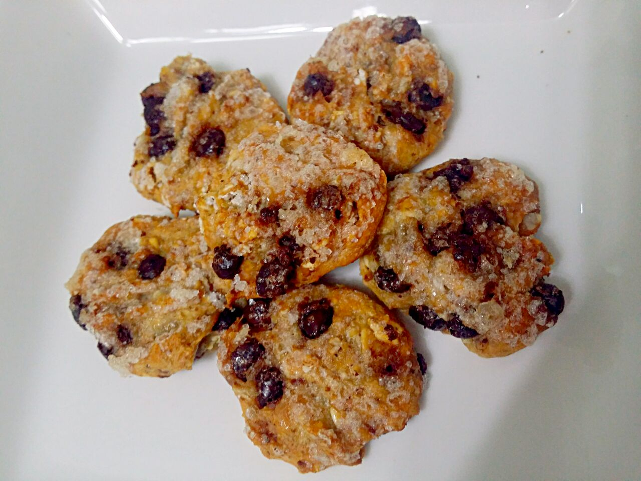 Oatmeal choc chip cookies + low fat yoghurt  (No Butter No sugar added)