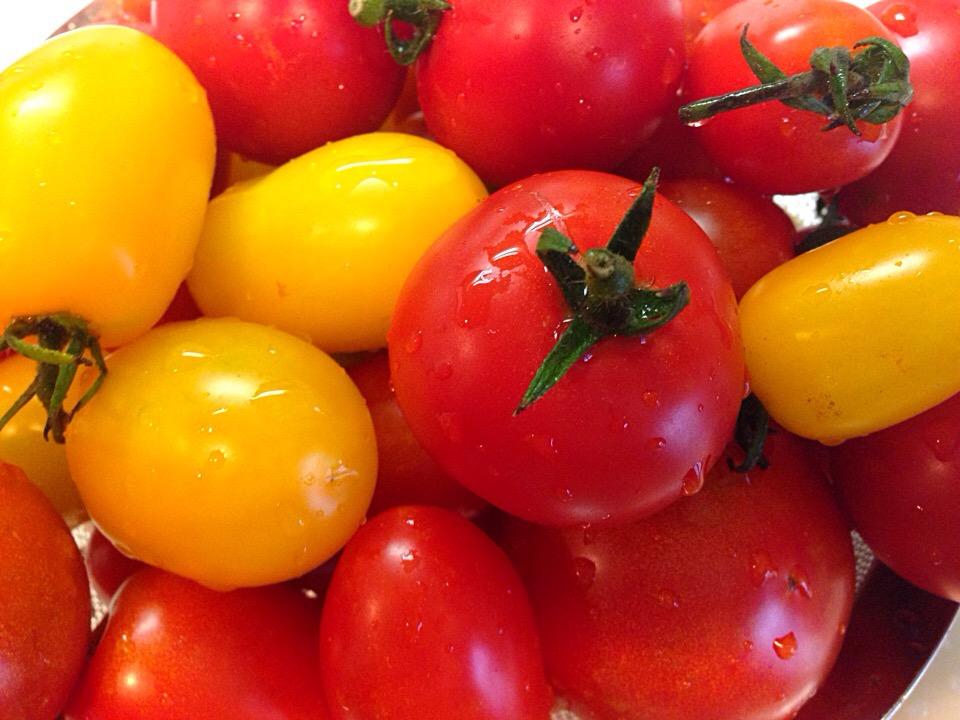 日焼けの季節到来!あの夏野菜で紫外線に負けない肌づくり