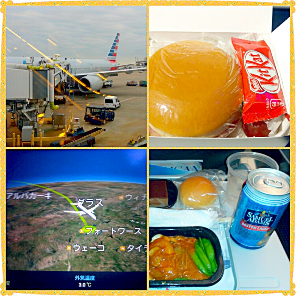 11/14 dallas fortworth in US(on the american airline) #機内食