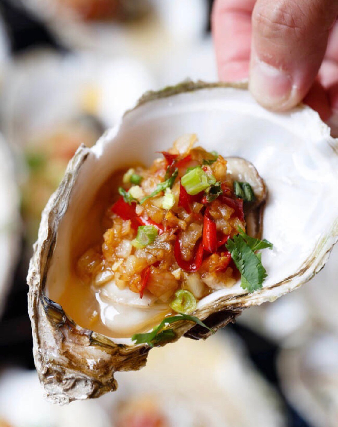 Oyster with Garlic Sauce